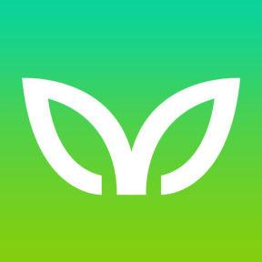 Viewfruit Survey Site